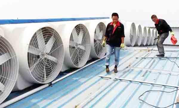 兖州屋顶风机_邹城通风换气风机_曲阜负压风机